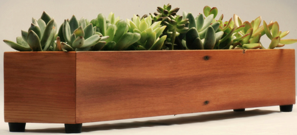 Planter Box with Succulents